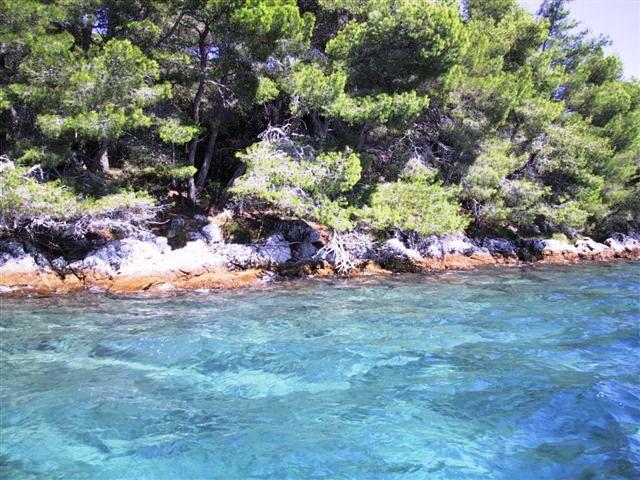 Island Rivanj