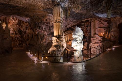 Excursion - Postojna Cave
